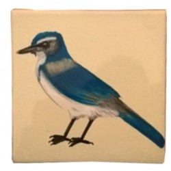 Azulejo Especial de Talavera